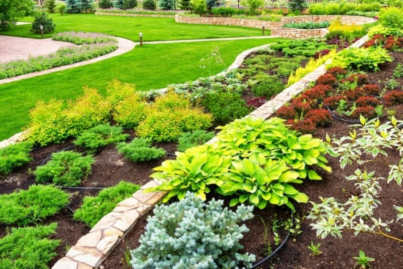 Ideal Spring Plants for HOA Landscaping